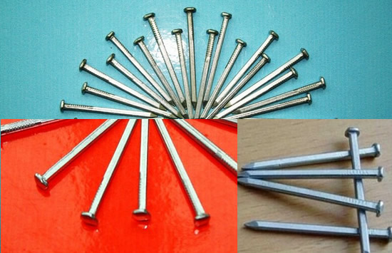 Galvanized Steel Common Nails for Boat Building